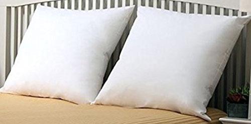 3. Euro Pillow by Web Linens, without a protector.
