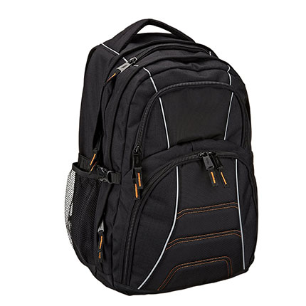 2. AmazonBasics Backpack for Laptops up to 17 inches
